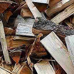 Palivové dřevo měkké čerstvé Chomutov